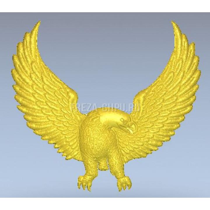 Eagle_005 Орел
