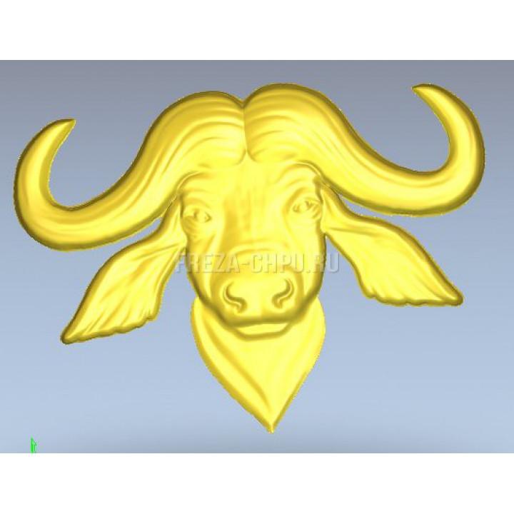 Буйвол голова buffalo_013