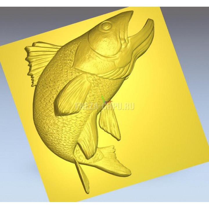 Рыба Fish_021