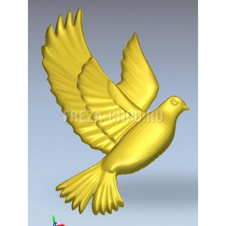 Голубь летит Dove_022