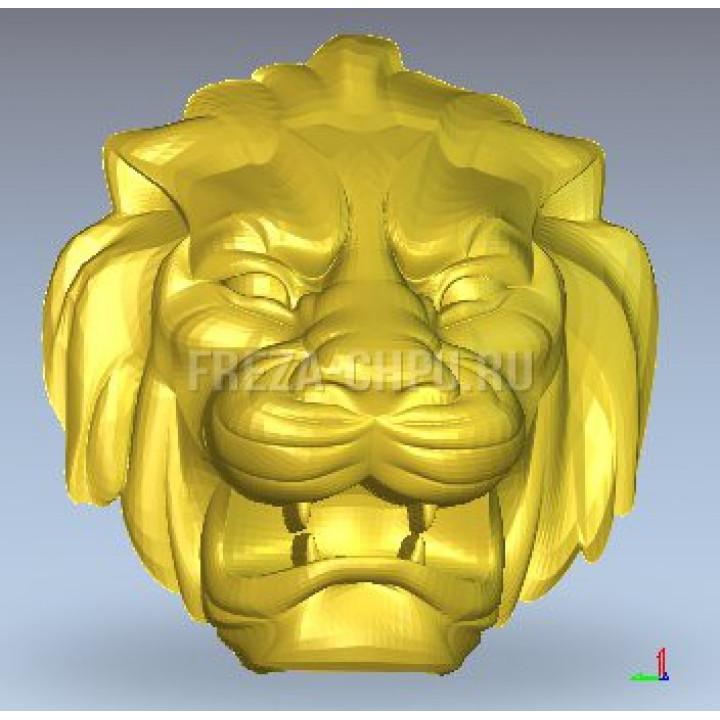 Лев голова морда Lion_face_024