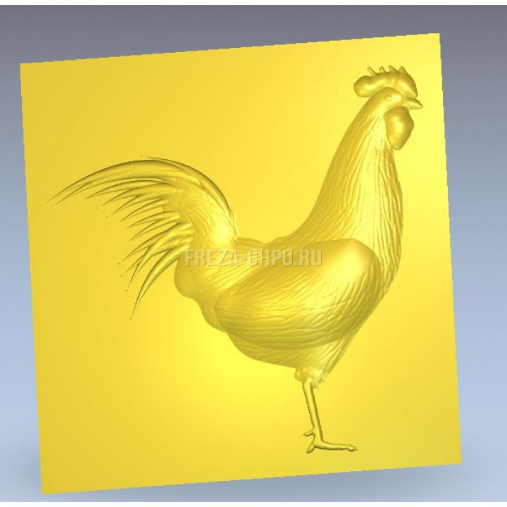 Петух птица Rooster_029