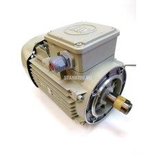 Двигатель Yilmaz ACK 420